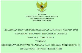 Jabatan Pelaksana Bagi PNS Di Instansi Pemerintah PermenPAN RB  terbaru nomor 41 tahun 2018