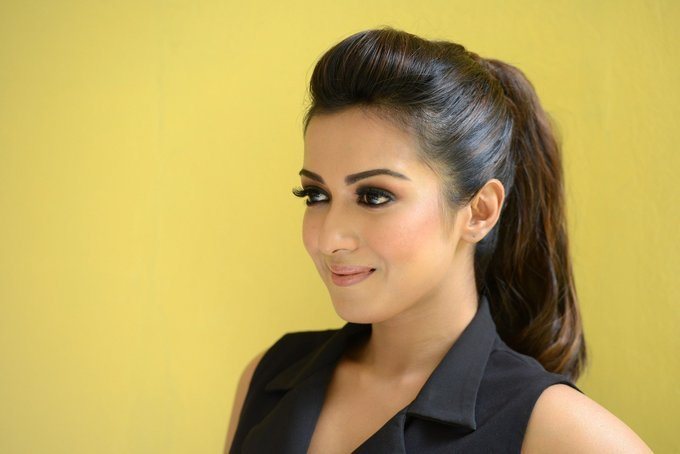 Catherine Tresa Stills At Gautham Nanda Movie Interview