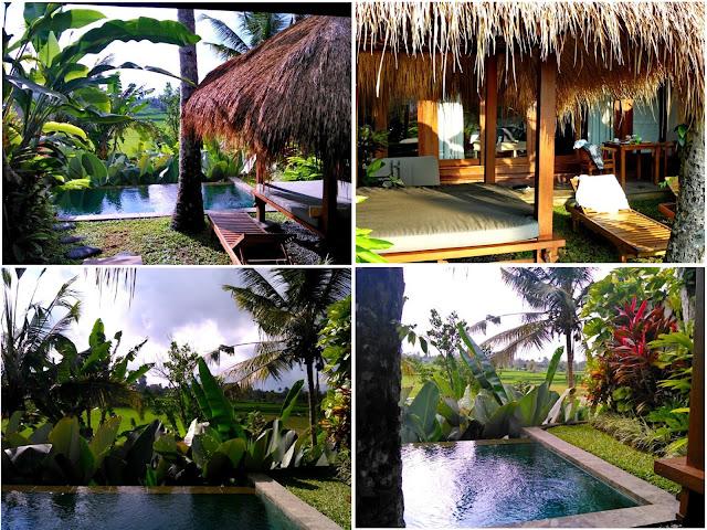 villas individuales ubud padi villas