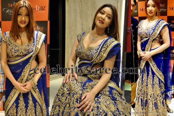 Payal Ghosh Blue Half Sari