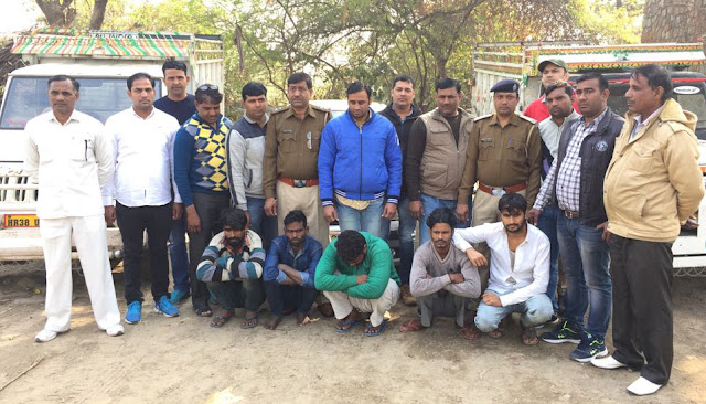 Crime Branch NIT arrested 5 accused for stealing vehicles and cattle
