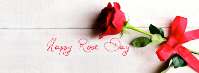 Romantic Happy Red Rose Day Cover Photos Facebook