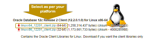 oracle 12.2 client installation linux