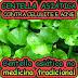 Centella Asiática no combate a celulite
