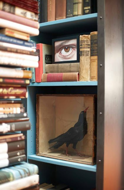 Dramatic library shelf painted blue crow shadowbox and books Ken Fulk