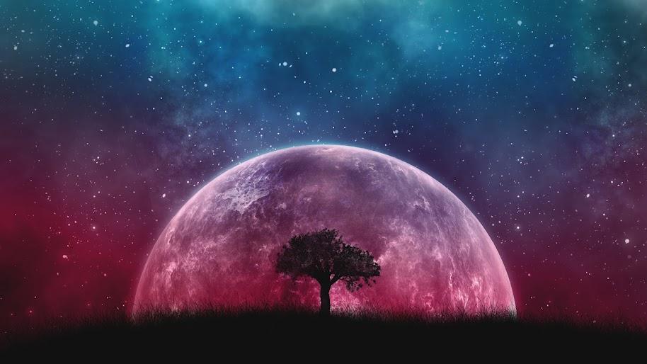 Moon, Night, Sky, Stars, Landscape, Scenery, 8K, #189