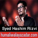 http://www.humaliwalayazadar.com/2016/10/syed-hashim-rizvi-nohay-2017.html