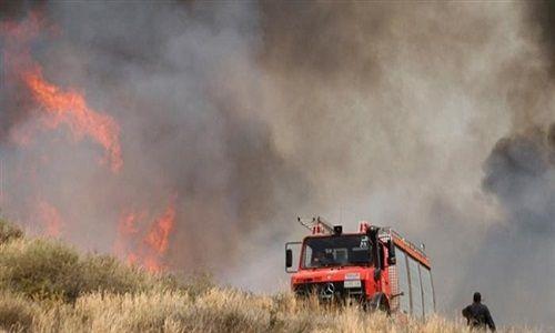 Αποτέλεσμα εικόνας για Μεγάλη πυρκαγιά στην Ηλεία