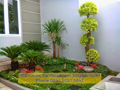 Tukang Taman Surabaya Simpel