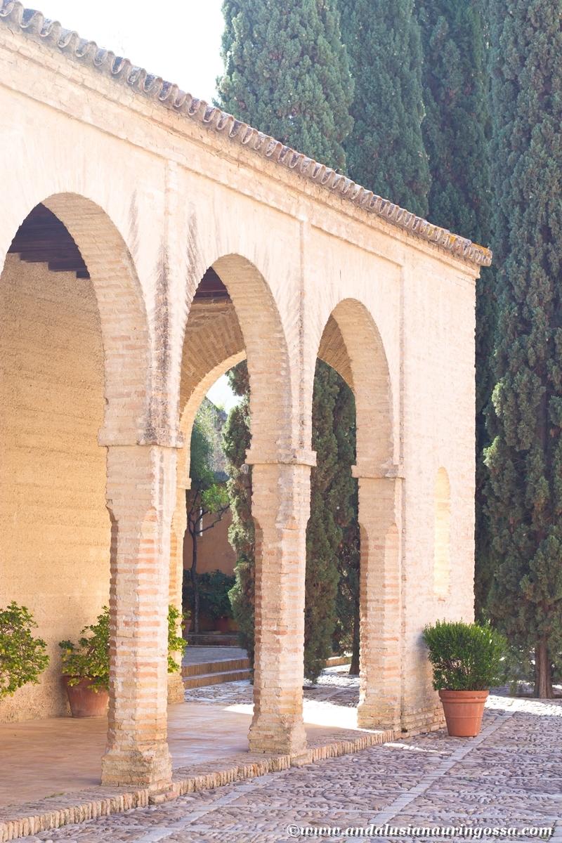 Jerez Alcazar 10