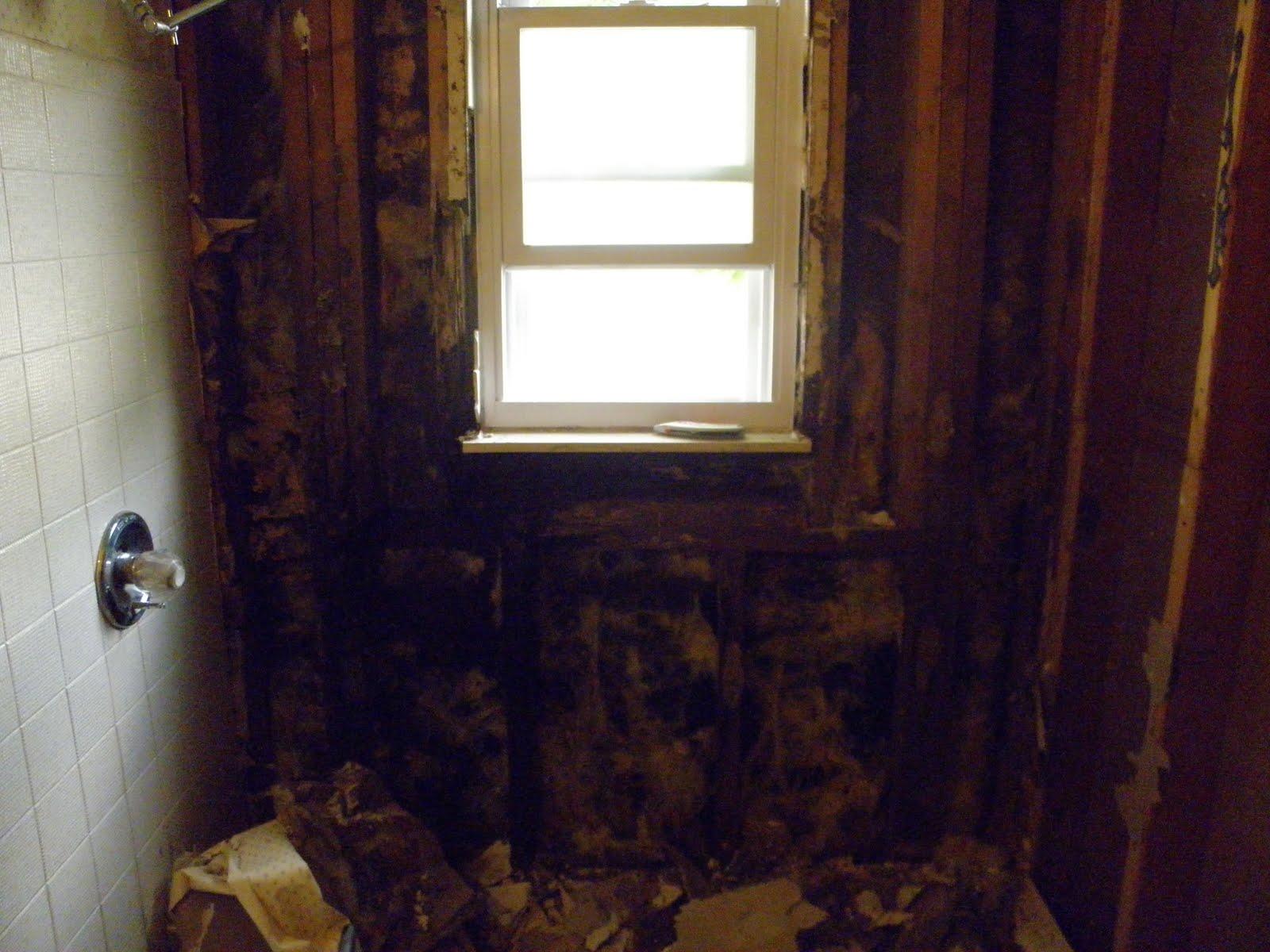 Shabby Love: Bathroom Redo Part 1