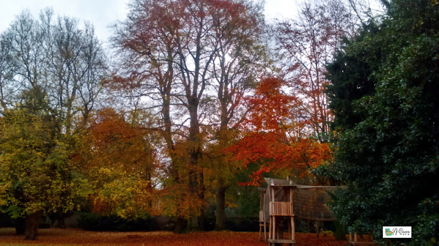 outono bélgica flandres