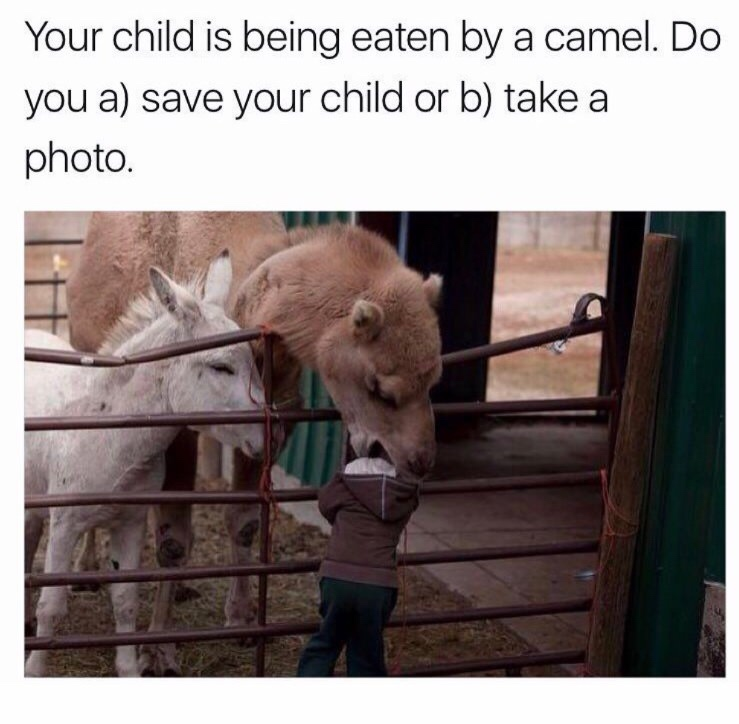 Funny Parenting Quiz Meme