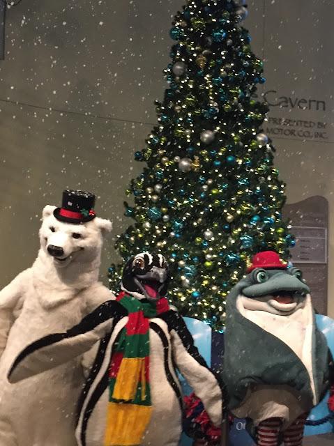 Holiday Season at Aquarium of the Pacific
