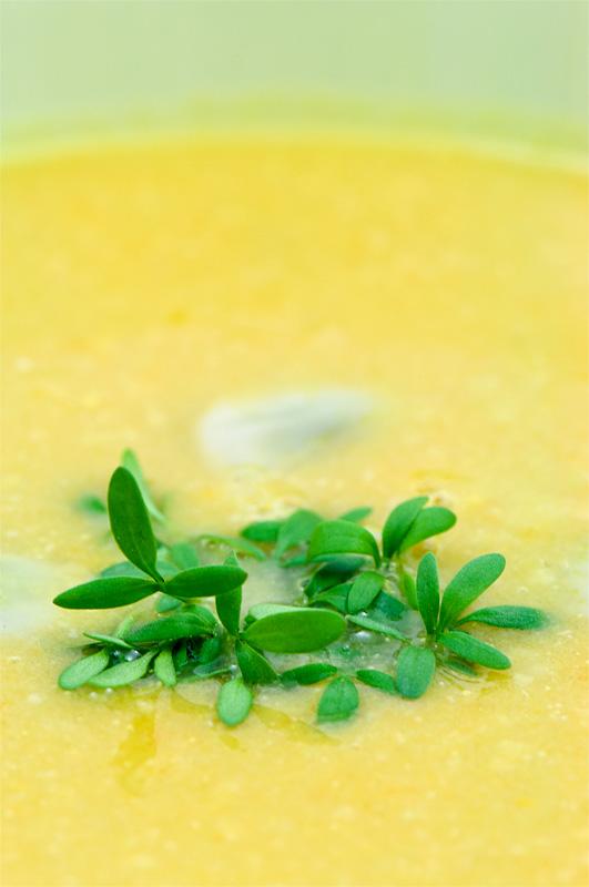 Kremna juha iz boba in korenčka od blizu