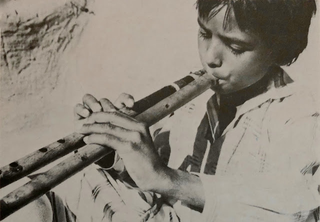 Rajasthani flute drone