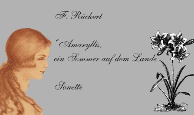 Gedichte Und Zitate Fur Alle F Ruckert Amaryllis Der Fruhling Kocht Sich Aus Des Winters Reifen 2
