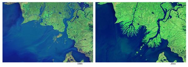 bukti perubahan bumi