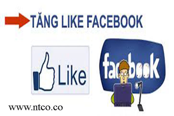 Loi ich cua dich vu tang like fanpage