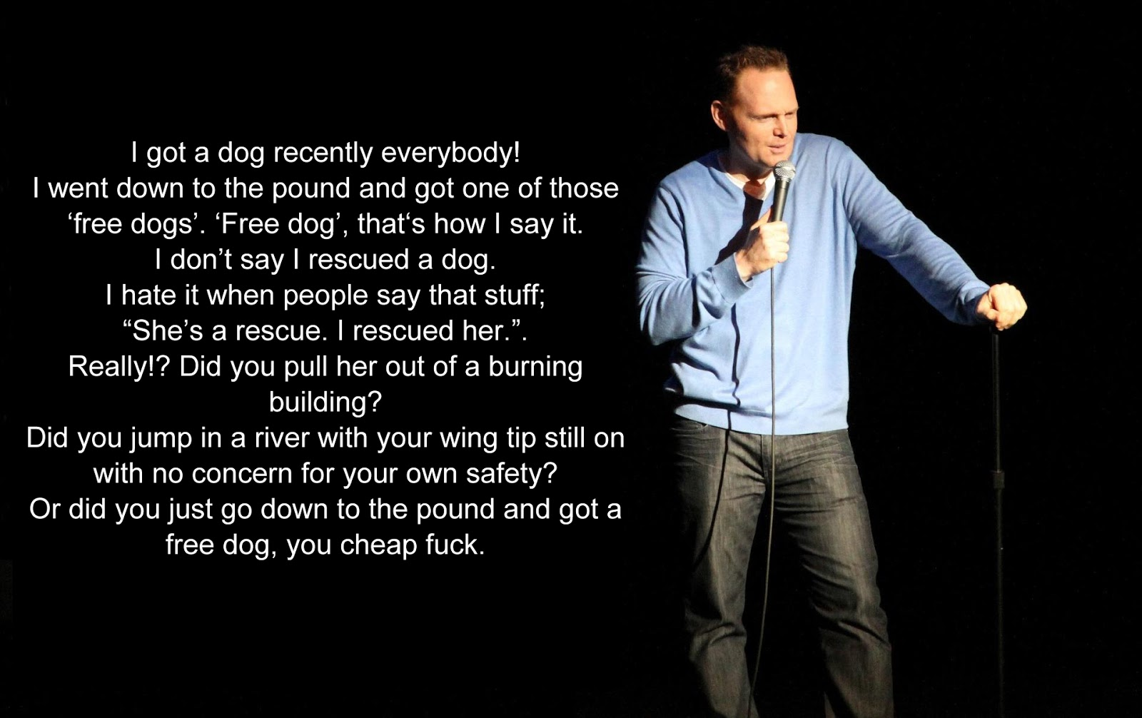 A joke about getting a free dog from a shelter