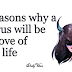 5 Reasons Why A Taurus Will Be The Love Of Your Life