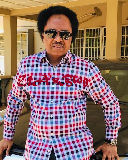 2019: Buhari, Atiku have realised restructuring is 'too grammatical' for voters – Sen. Sani