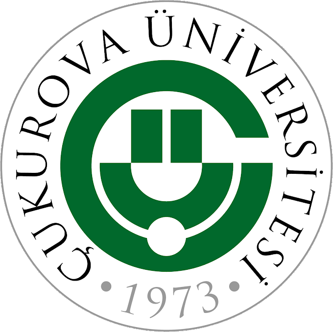 Çukurova Üniversitesi 162 sözleşmeli personel alım ilanı