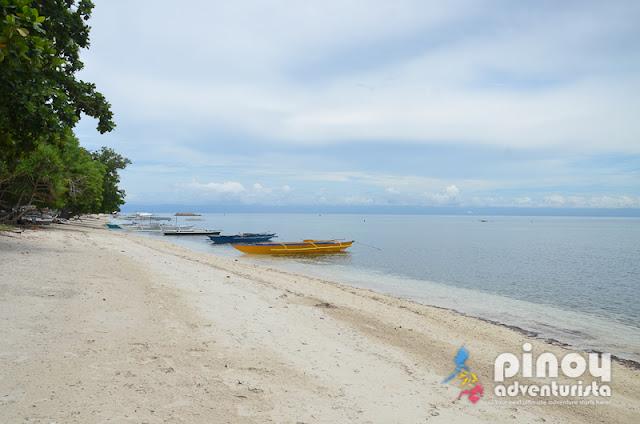 Top Best Resorts in Panglao Island Bohol