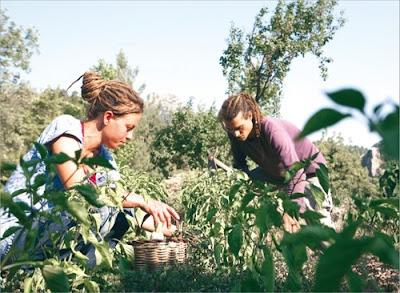 doğa aktivistleri