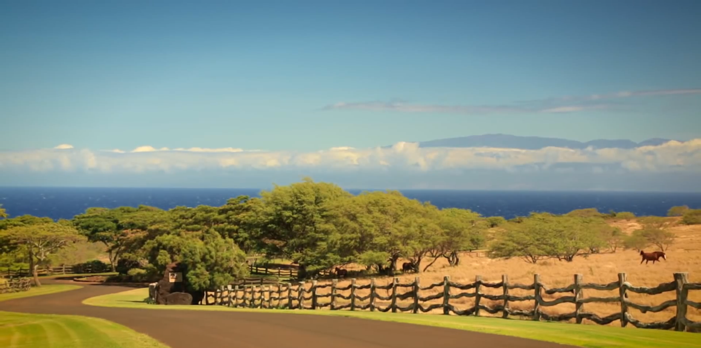 Hawaii | State of United States of America