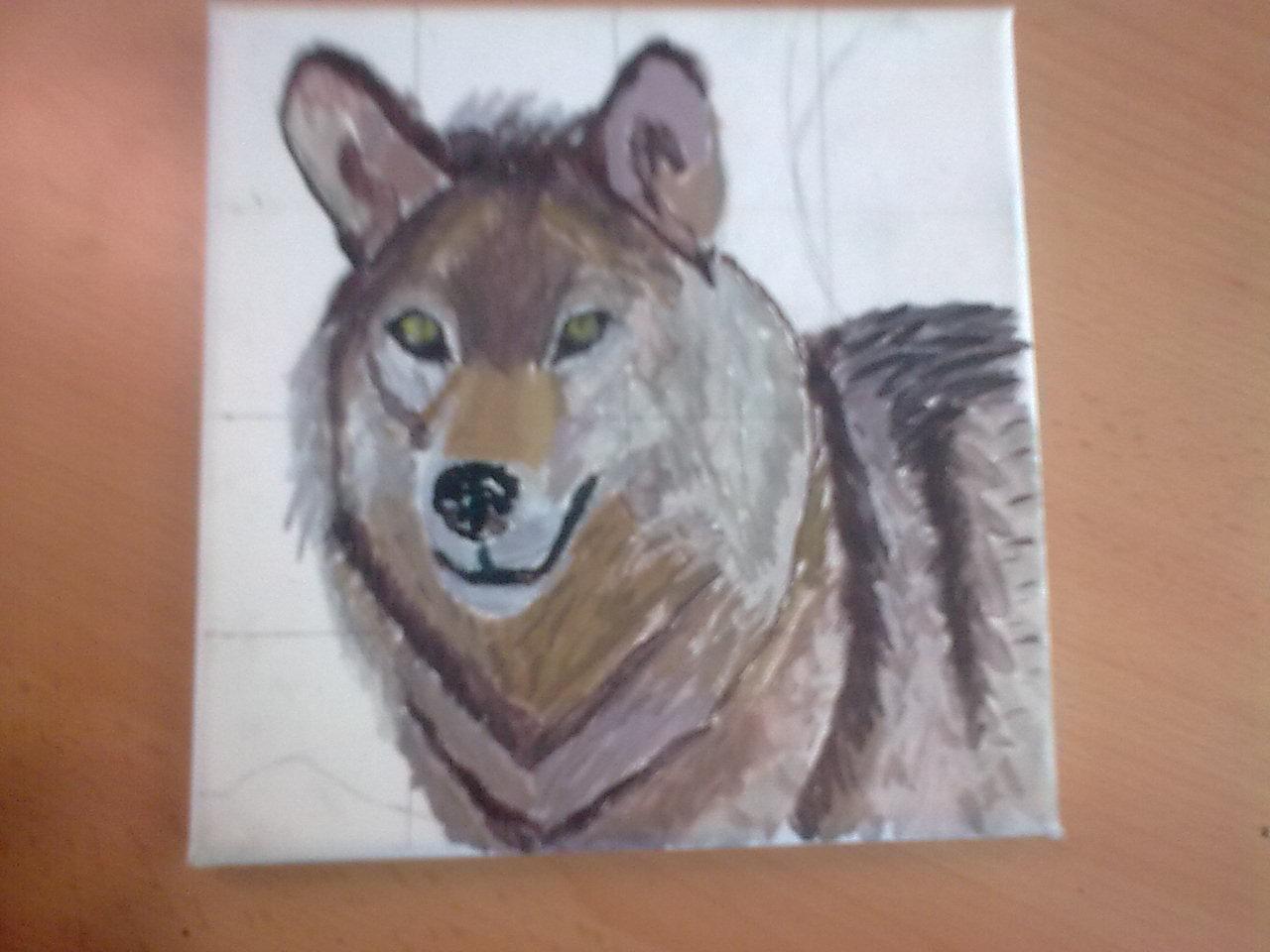 Rehabilitación Del Lobo Gris En Proceso: Aboyayo Pics & Draws: Lobo: Proceso En Fotos