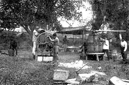 Изготовление бекмеса в Крыму