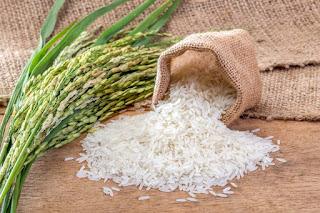 Zakat dengan beras