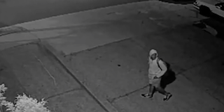 Cops Seek Youth In Assault Of Man, 61, Walking Dog In Overbrook