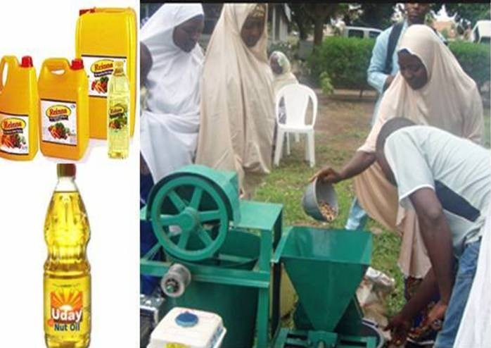 Start A Profitable Groundnut Oil Production Business in Nigeria