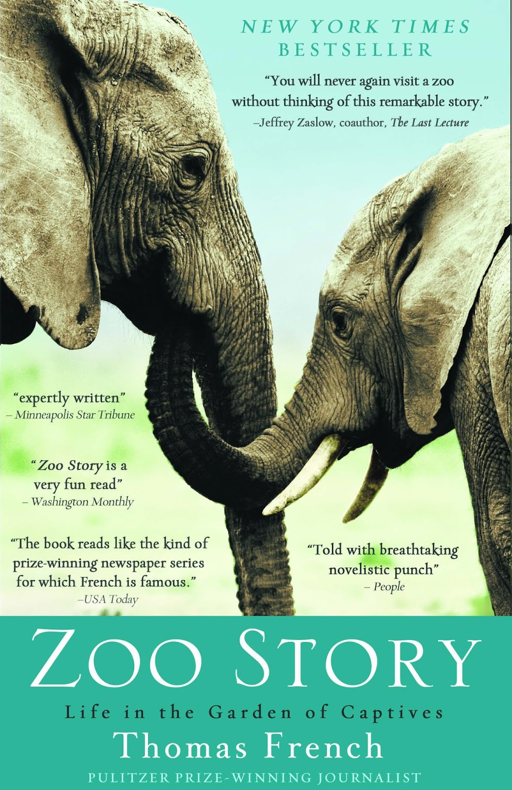 the zoo story essay questions Find essay examples get a custom paper questions & answers essays on zoo story this essay primates zoo activity talks about the of three types of.