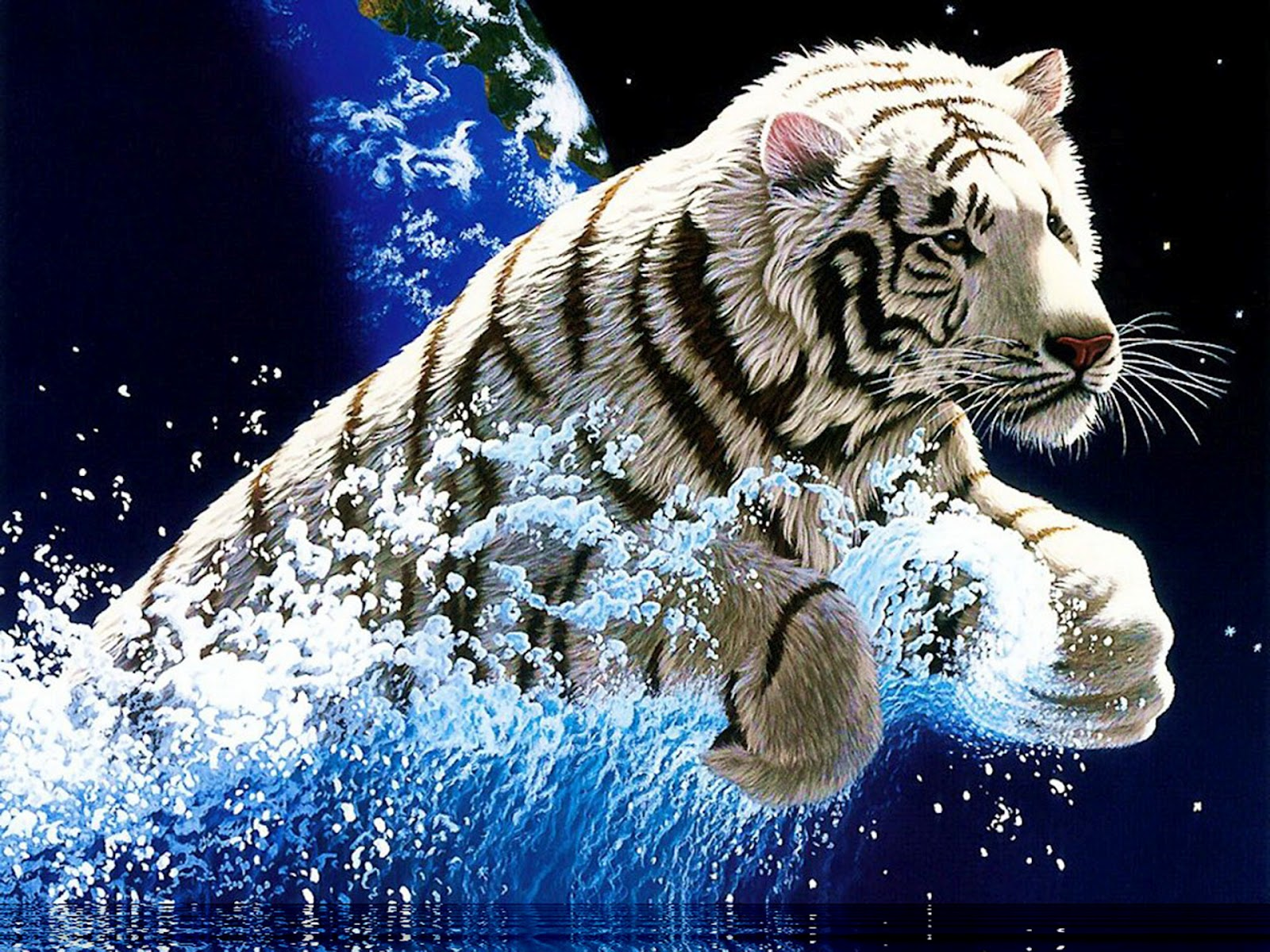 Cool Wallpapers Blog: Amazing White Tiger Wallpapers