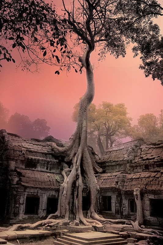 Angkor Wat, Cambodia | 10 Places to See Beautiful Sunset Around The World