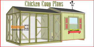 how to build a chicken coop,chicken coop,chicken,how to make a chicken coop,how to,build a chicken coop,coop,chickens,diy chicken coop,how to build a chicken house,backyard chickens,how to make chicken coop,how to make a chicken cage,build,how to build a chicken coop for 20 chickens,how to build a large chicken coop,how to build a modern chicken coop