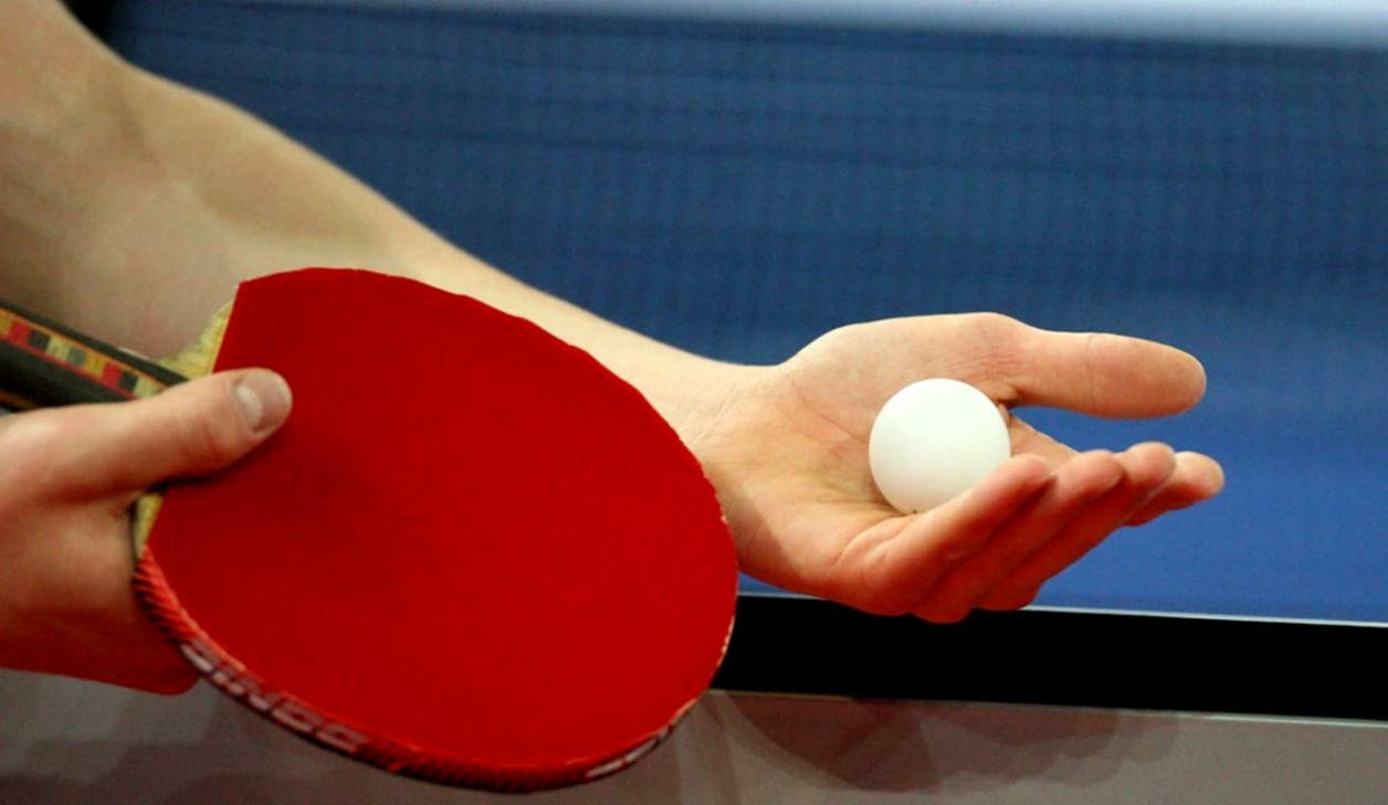 Butterfly Table Tennis Wallpaper Hd