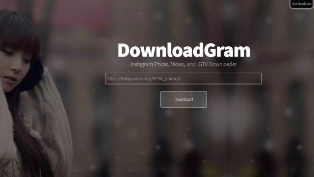 DownloadGram - Download Foto dan Video Instagram