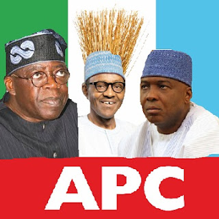 Our Party'll Collapse By January UNLESS .... - APC Spokesman