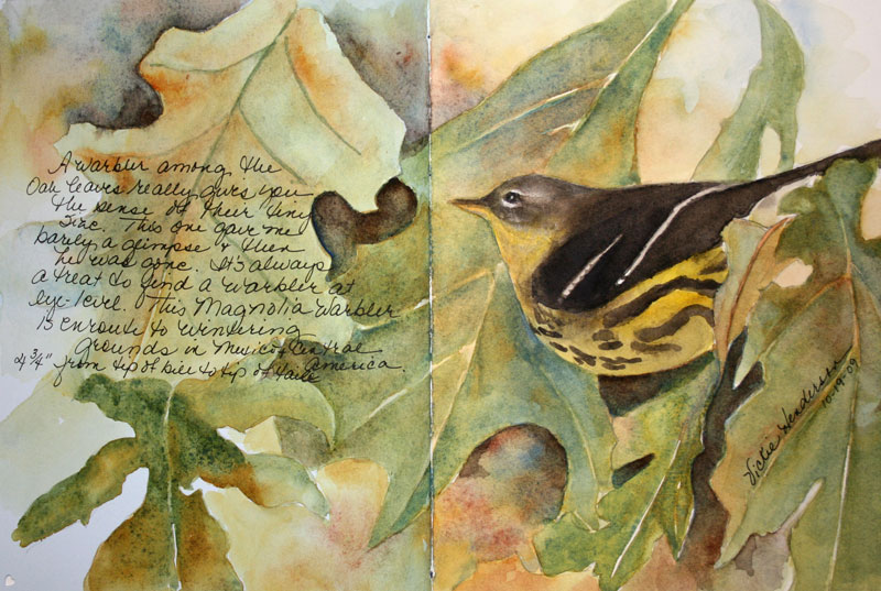 Watercolor Nature Journaling Workshop