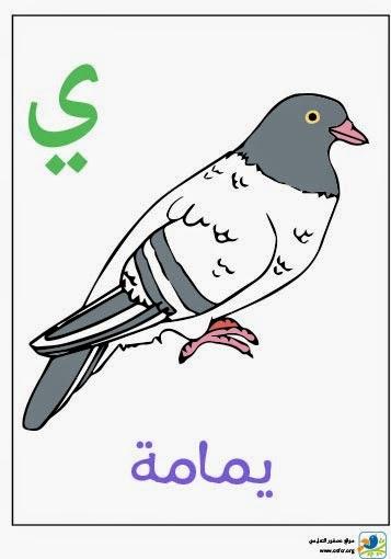 ملصق تعليمي للأطفال لتعليم حروف الهجاء (حرف الياء)