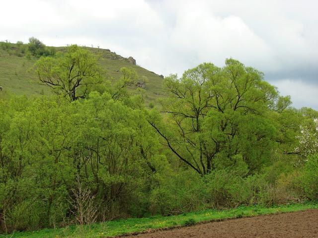 Скалистые холмы