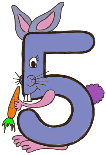 coelho número cinco