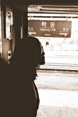 [Korail S-train] - Bukcheon Cosmos, Hadong, Suncheon and Deungnyang | meheartseoul.blogspot.com