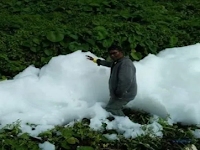 Warga Papua Geger Temukan Gumpalan Putih Misterius Seperti Awan Jatuh, Benarkah?