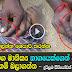 Naga Manikkam - Man removes Snake Pearl stone from cobras head