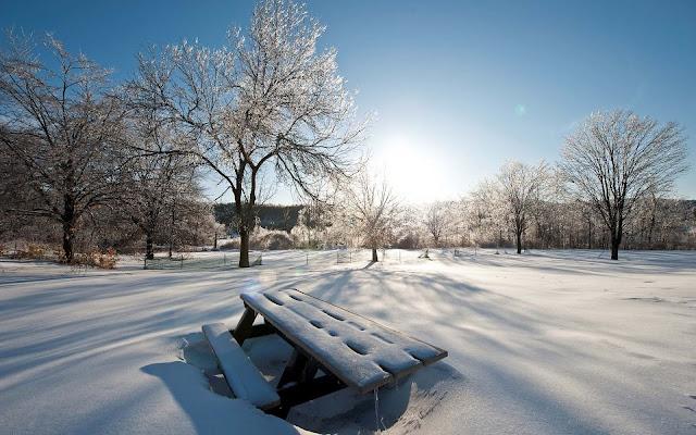 Veel sneeuw in het park
